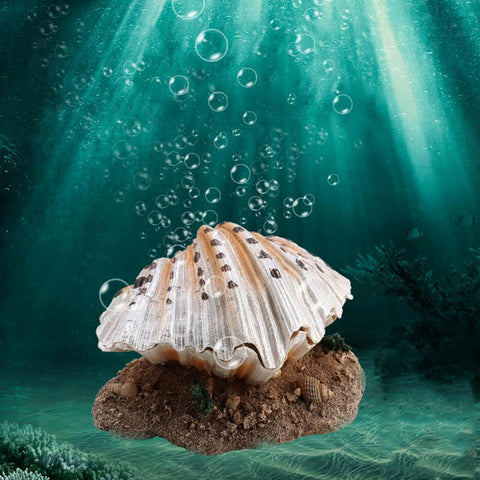 Air Pumps
