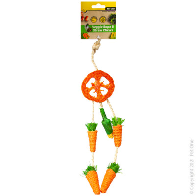 Veggie Rope and Straw Chew Hanging Dreamcatcher