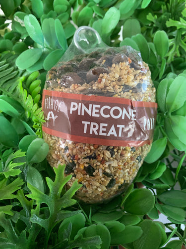 Pine Cone Treat Parrot - Large