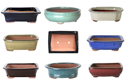 Bonsai Pots Assorted Large 21x16x7cm BOX8