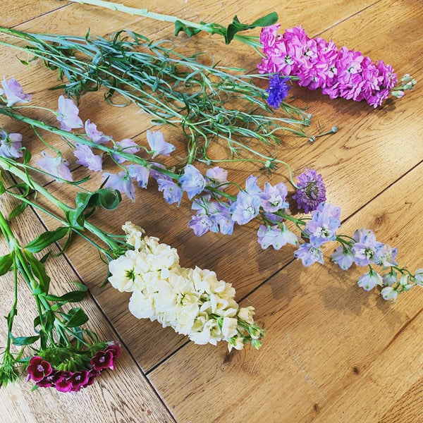 British Grown Flower Stems