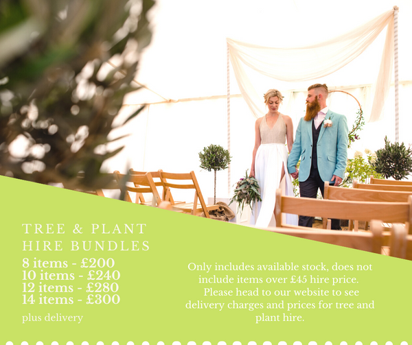 Tree & Plant Hire special offers