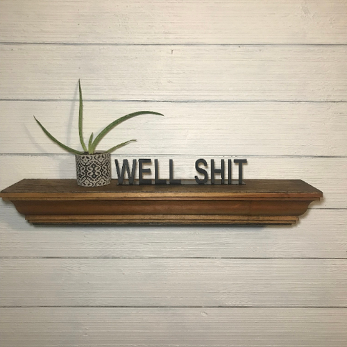 Shelf Words - Funny | Metal Shelf Decor - SD1017