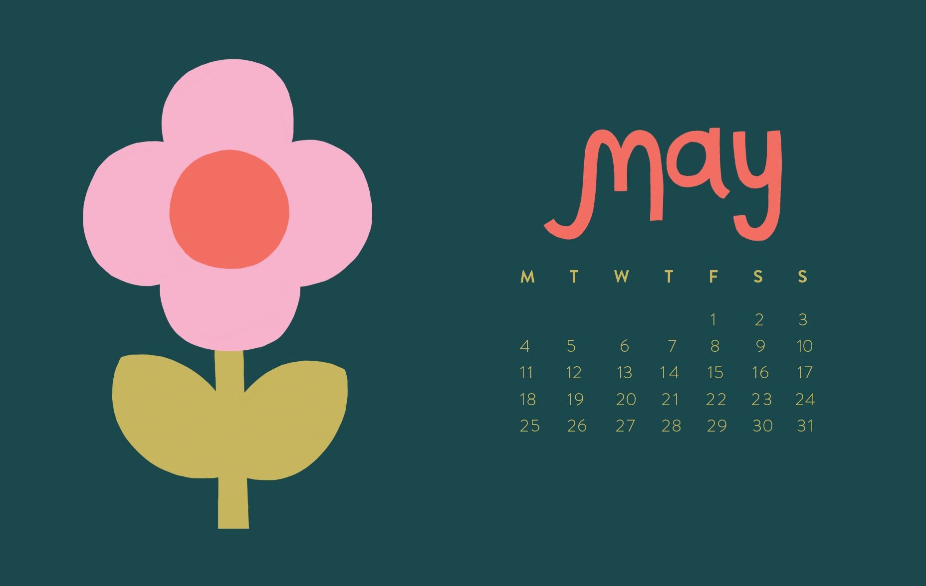 May Daisy Calendar Free HD desktop wallpaper download | Raspberry Blossom