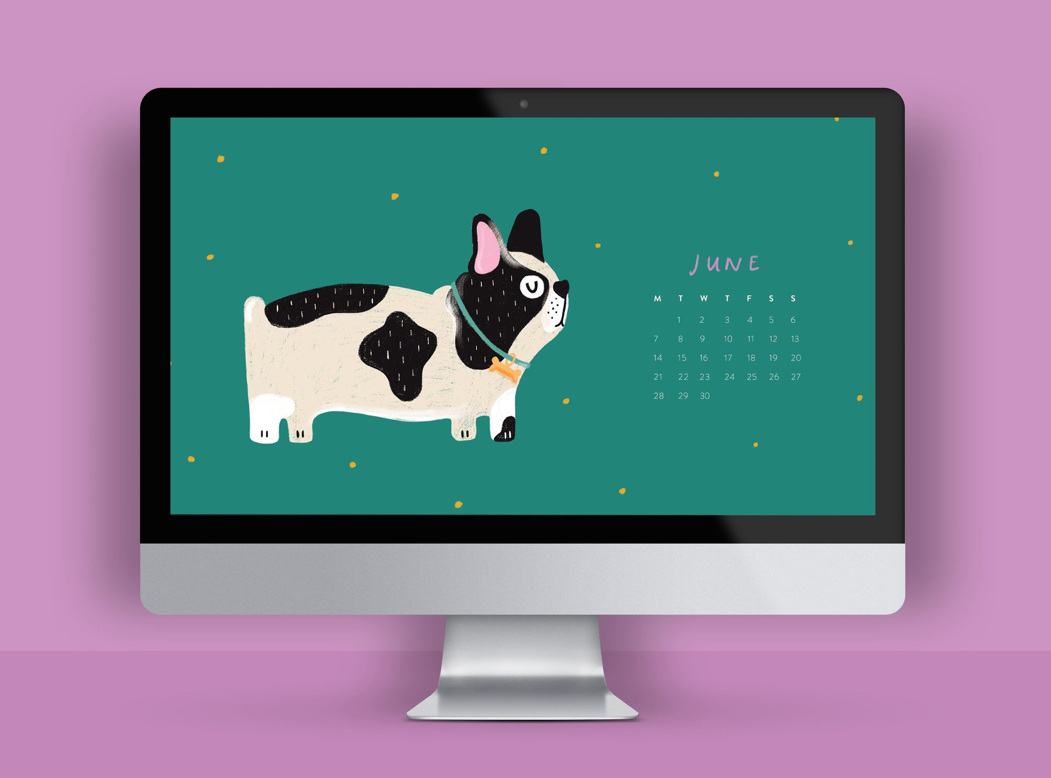 Cute Free HD wallpaper for desktop, illustrated french bull dog
