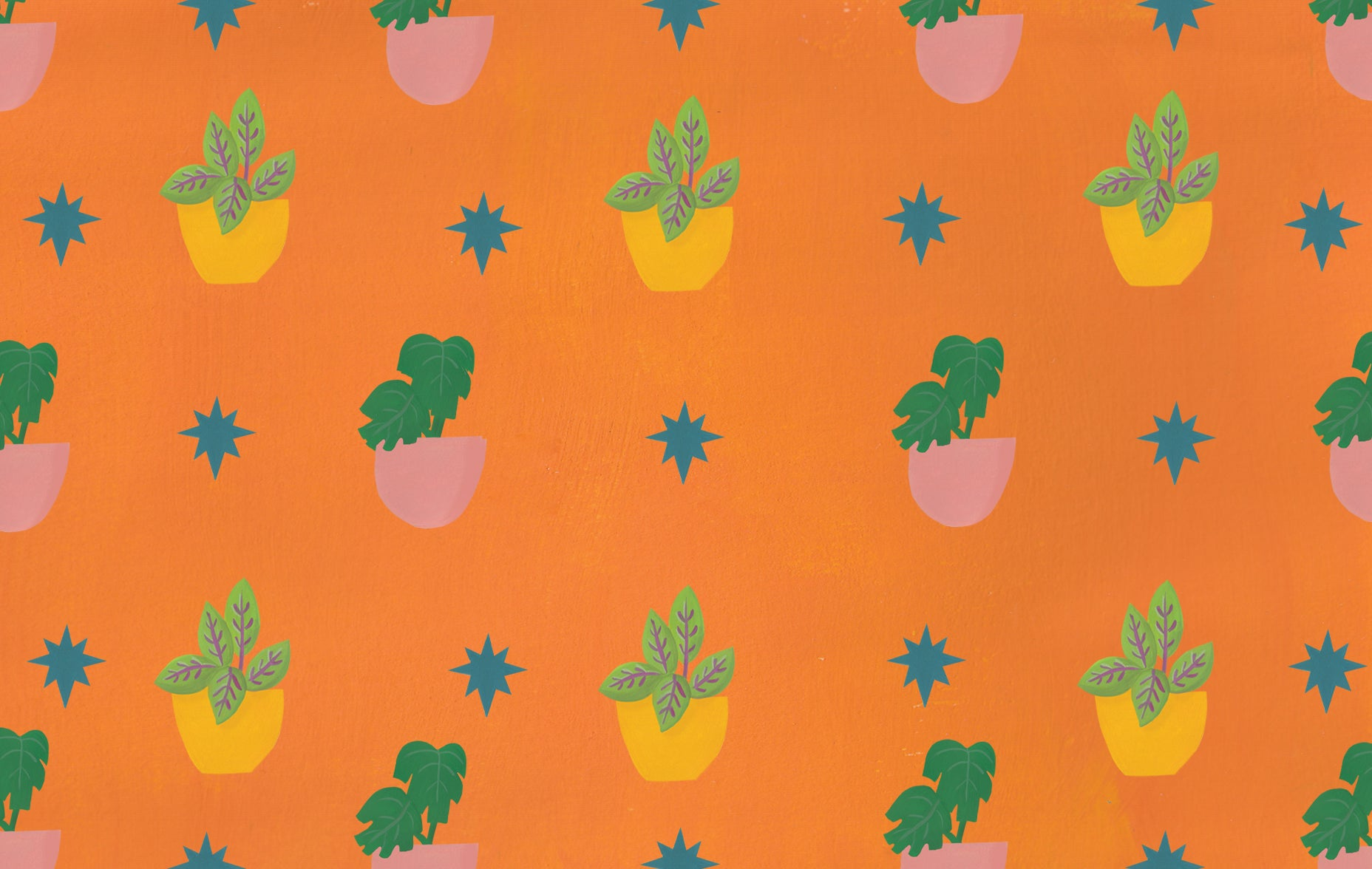 Bright and cheerful illustrated houseplants, free wallpaper for desktop | Raspberry Blossom
