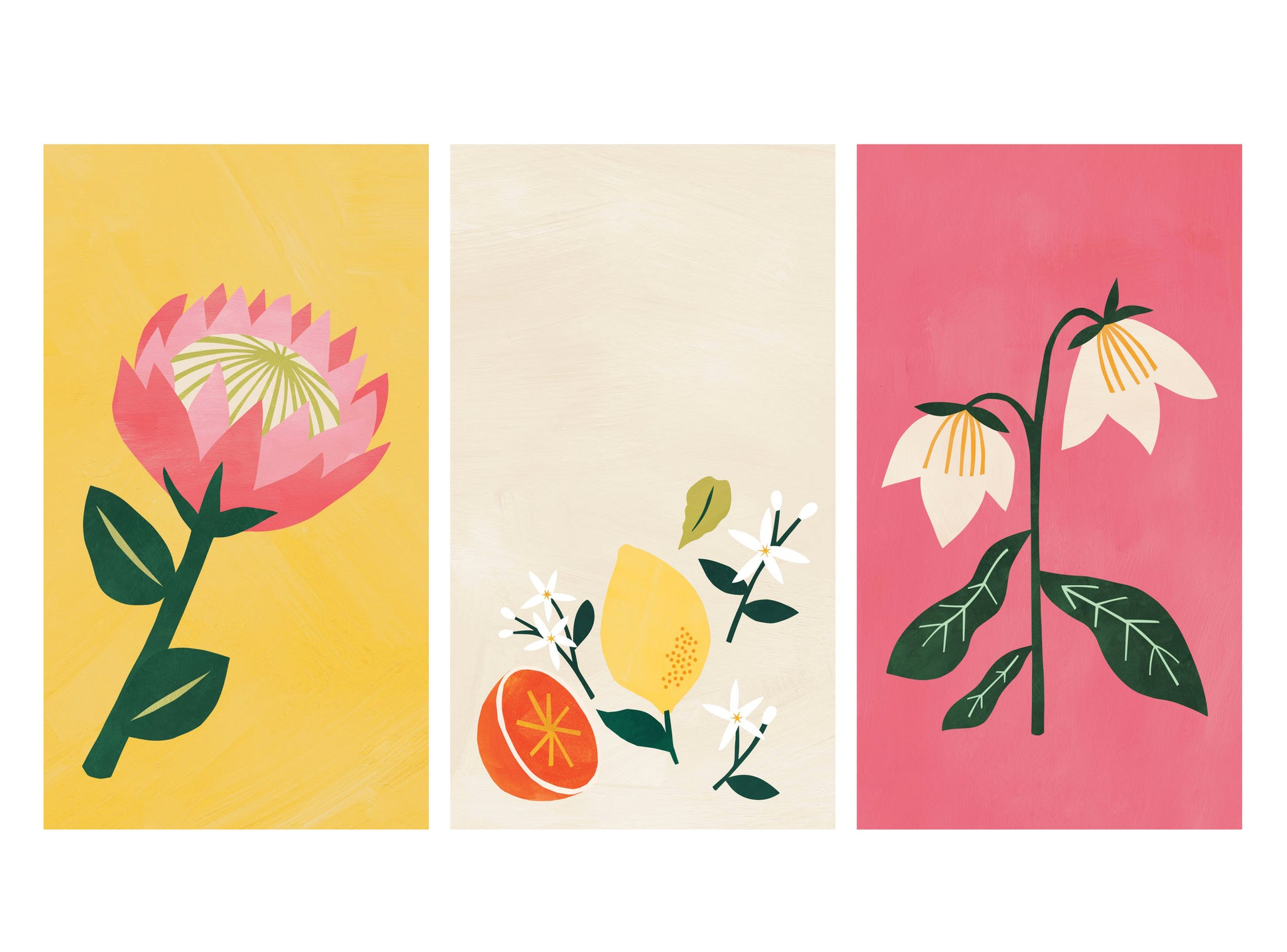 Botanical themed illustrated phone wallpapers | Raspberry Blossom