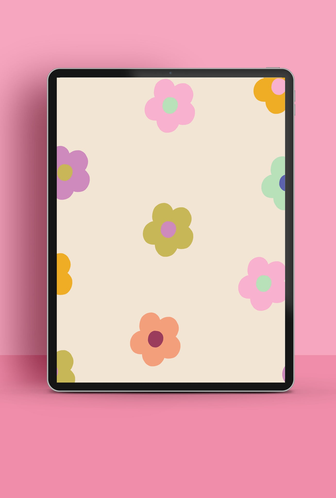 Colourful Daisies Free HD Tablet Wallpaper Download   Raspberry Blossom