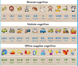 Cognitive Matching Toy