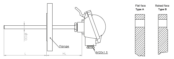 Flanged temperature sensor