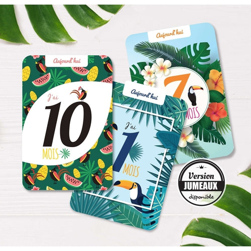 Cartes étapes Collection Tropical