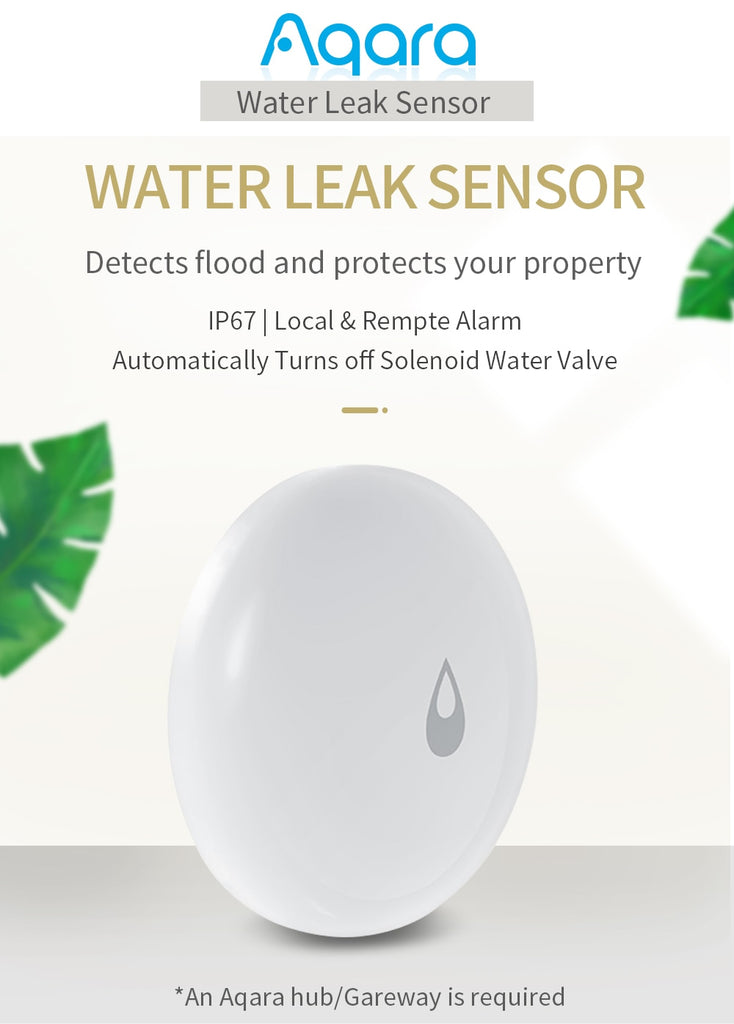 Water Sensor - Detector with Remote Alarm for Flood and Water Leak