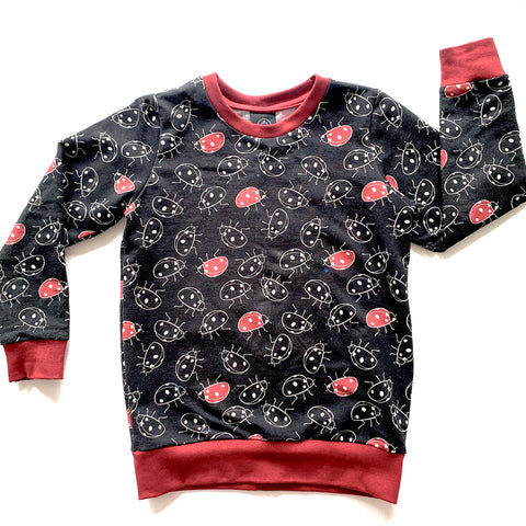 Ladybirds Jumper Full pattern