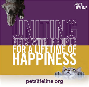 Morning Paws - Barking Dog Roasters Uniting Pets with people for a lifetime of happiness petslifeline