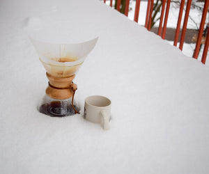 Chemex 6 Cup - Barking Dog Roasters