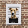 Custom Palz Crime Time Canvas