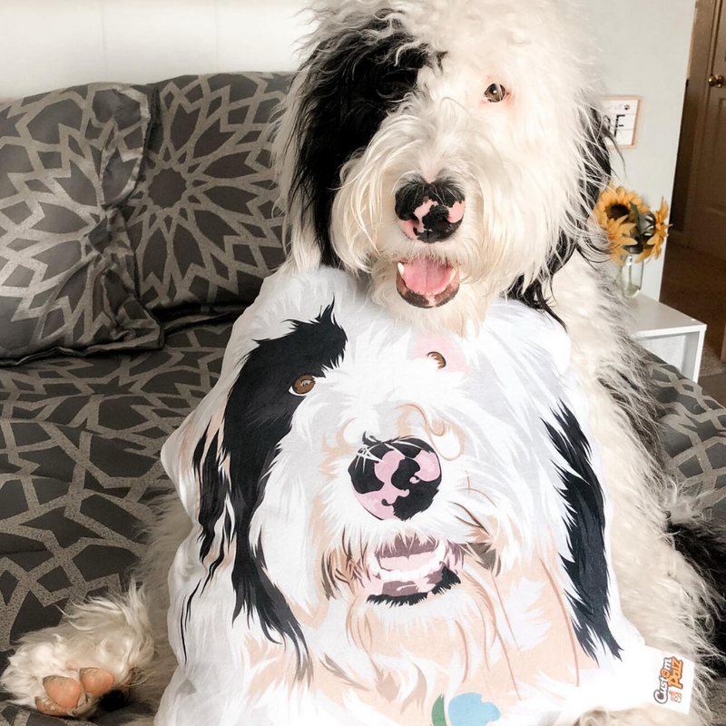 Custom Palz Cartoon Pillow