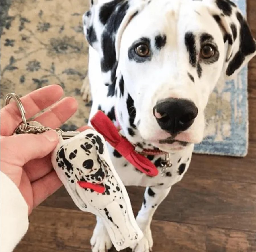 Pet Art Keychain