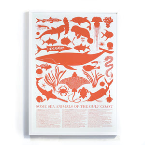 Sea Animals of the Gulf Coast Print