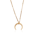 Crescent Horn Necklace