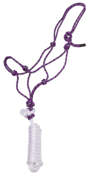 Knotted Rope Halter with Lead - Purple