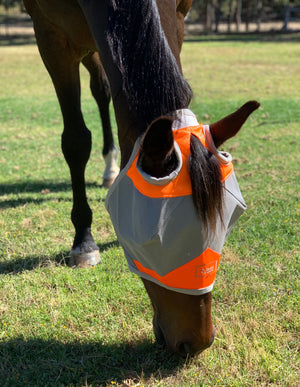 Fly Buster Standard Fly Mask - Orange - Limited Edition