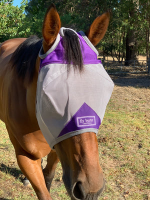 Fly Buster Standard Fly Mask - Purple