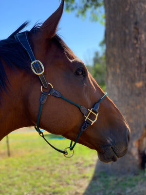 Mane Event Multi Halter - Hunter Green