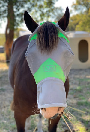 Fly Buster Long Nose Fly Mask - Lime - Limited Edition