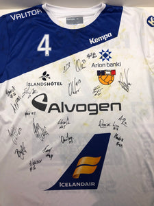 Icelandic Men Handball National Team