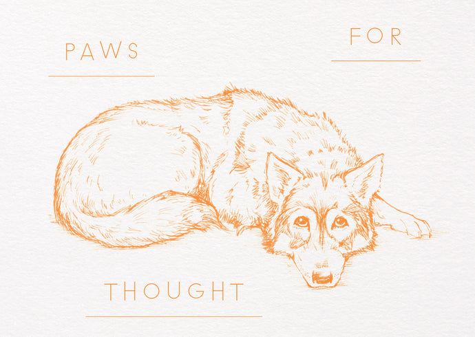 Gift Voucher – Paws for Thought