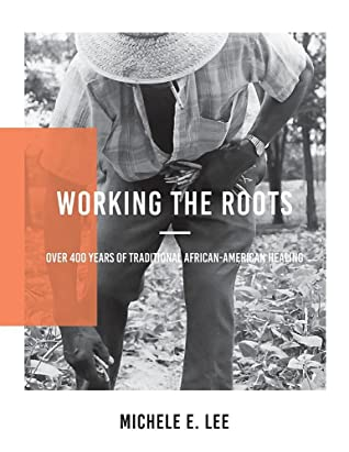 Working the Roots: Over 400 Years of Traditional African American Healing - Michele E. Lee