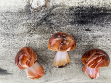 Load image into Gallery viewer, Saddonyx Silk Agate Crystal Mushroom