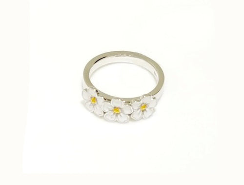 R4310 RING ENAMEL