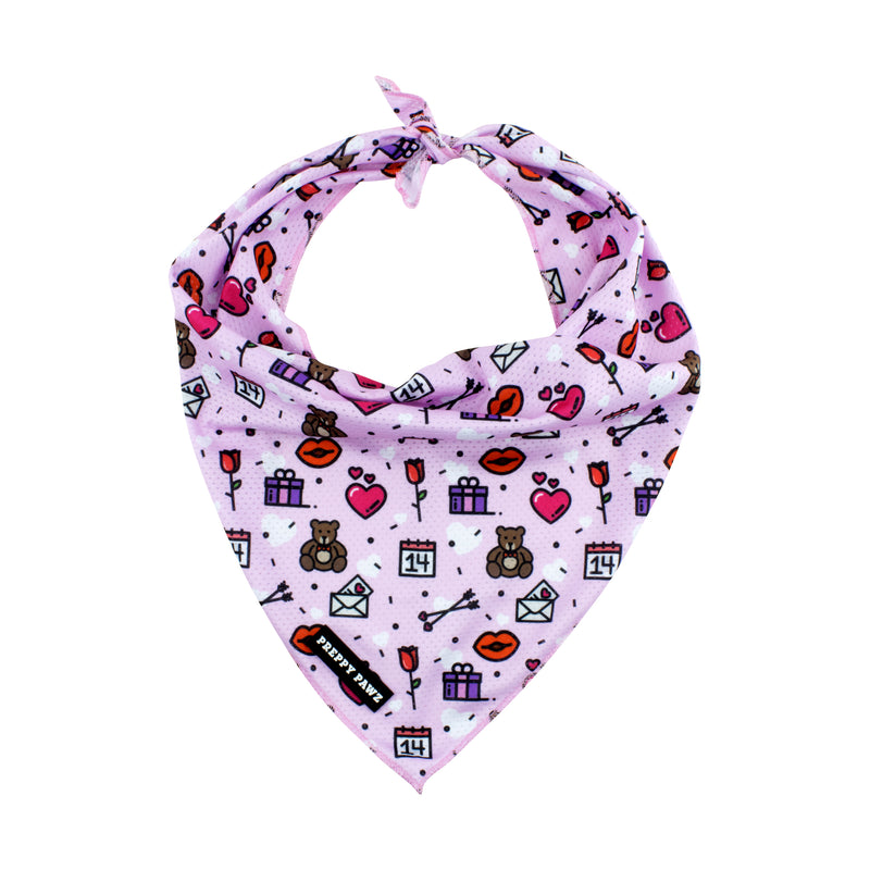 Cooling Valentine's Day Dog Bandana