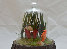 Load image into Gallery viewer, (#6) 75 Apples Art- Resin BJD & Terrarium Insect Doll OOAK
