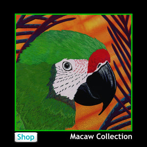 Macaw Parrots from Jan Rickman