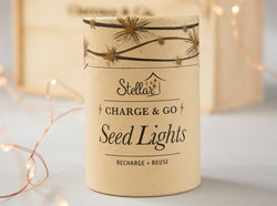 NZ gift boxes for her Seed Lights