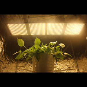 SAMSUNG QUANTUM BOARD LED GROW LIGHTS