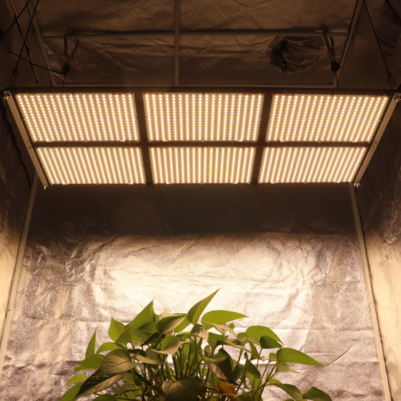 Quantum Board LED Grow Light 600W