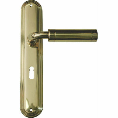 Solid brass lever handle on back plate - Decor Handles
