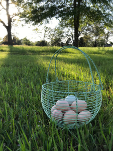 Pasture Perfect Eggs - Dozen (does not ship)