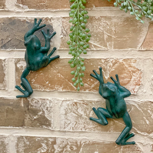 Crawling Frog Décor