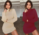 Sexy High-Necked Slim Long-Sleeved Dress