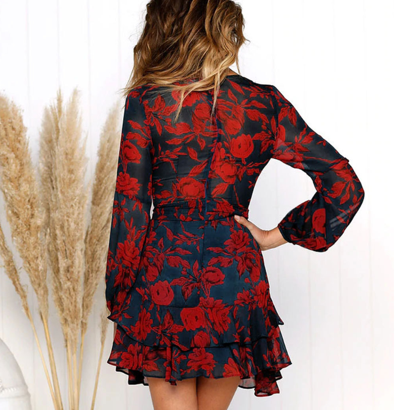 Women's Sexy V-neck Long Sleeve Print Dress