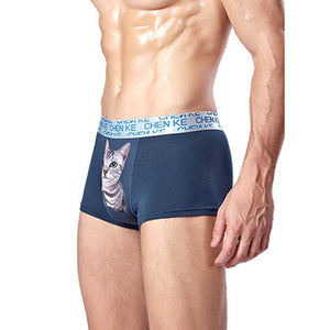 Sexy man boxer cat underwear