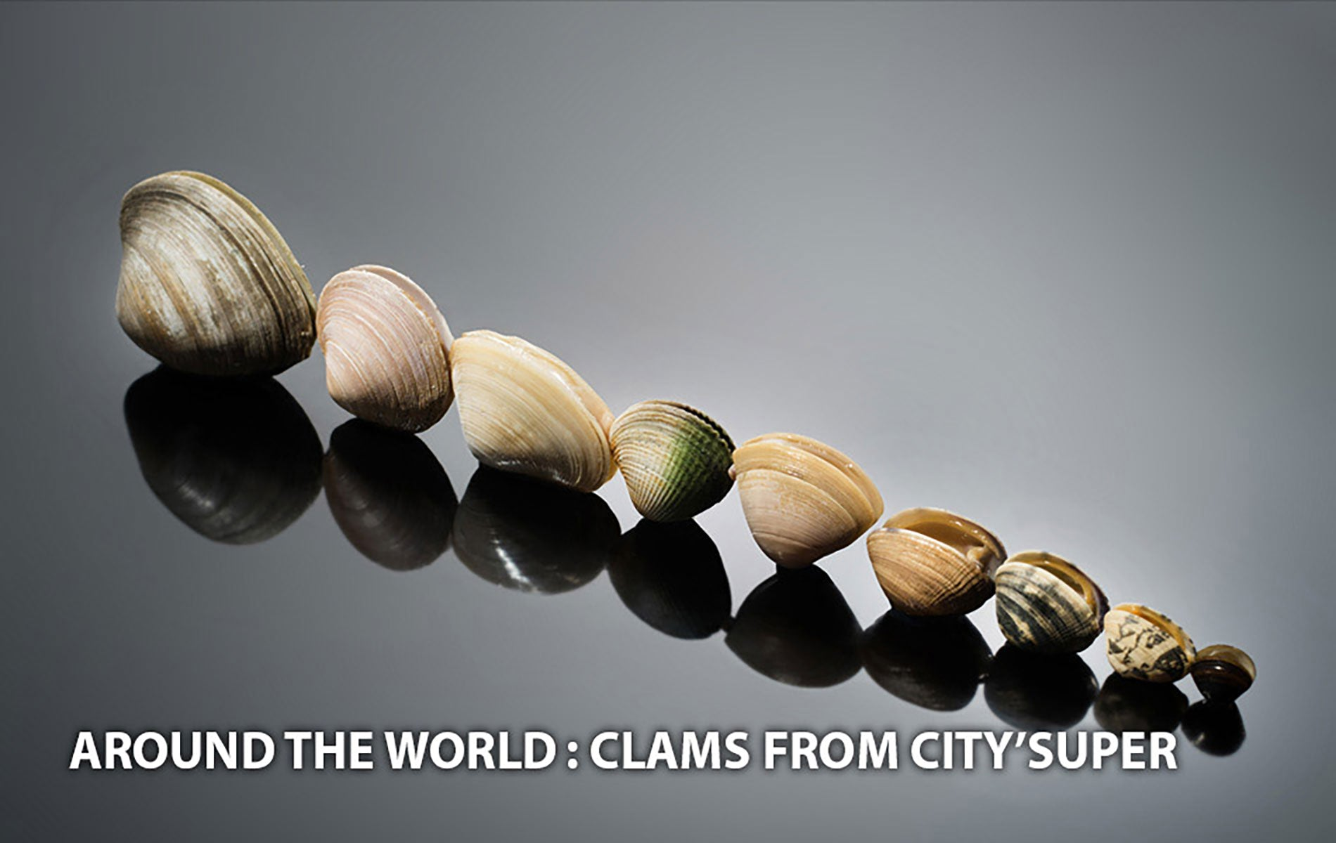 Clams from Around the World at city'super