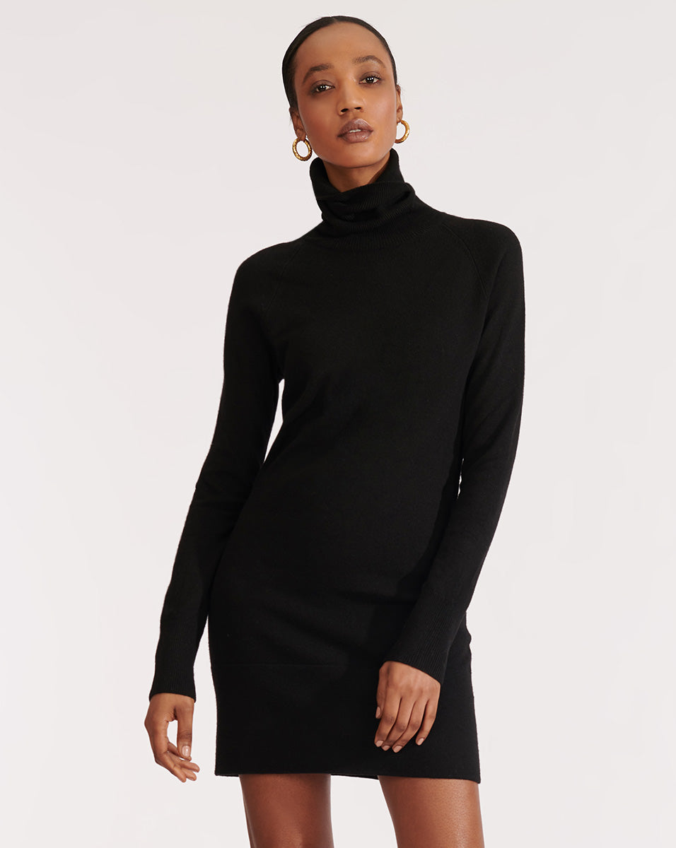 Saranac Turtleneck Mini Dress - Black