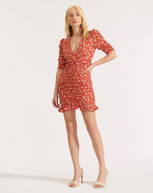 Josephine Dress - Red Multi