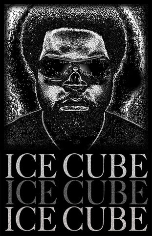 "Ice Cube ""Vision""  D-10"